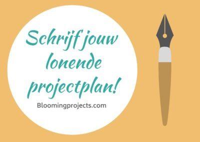 afbeelding template projectplan website